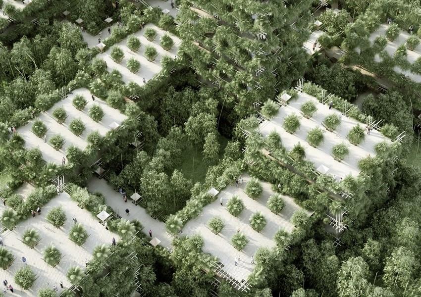 Зеленый город в Китае