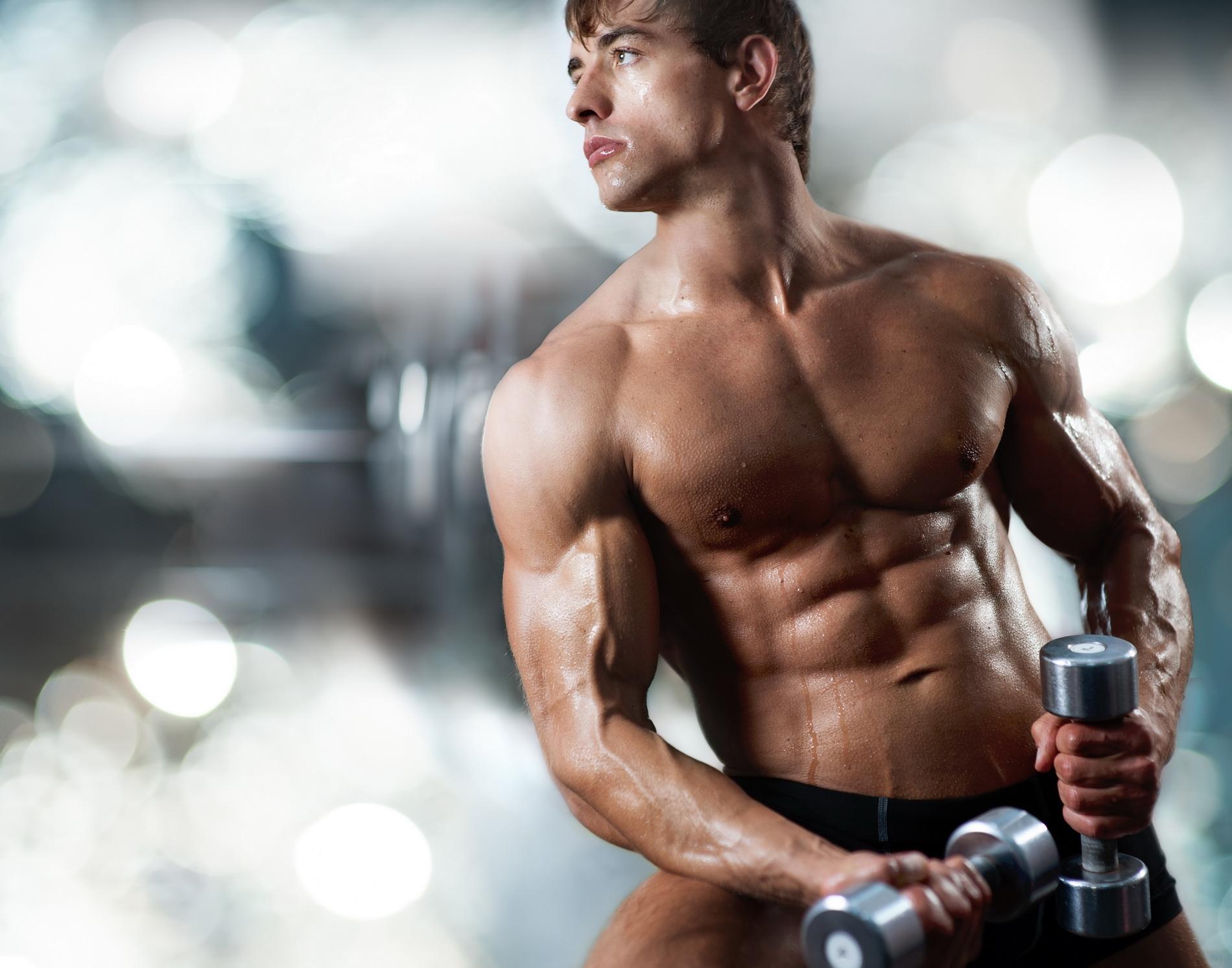 Растим мышечную массу – эффективно и быстро