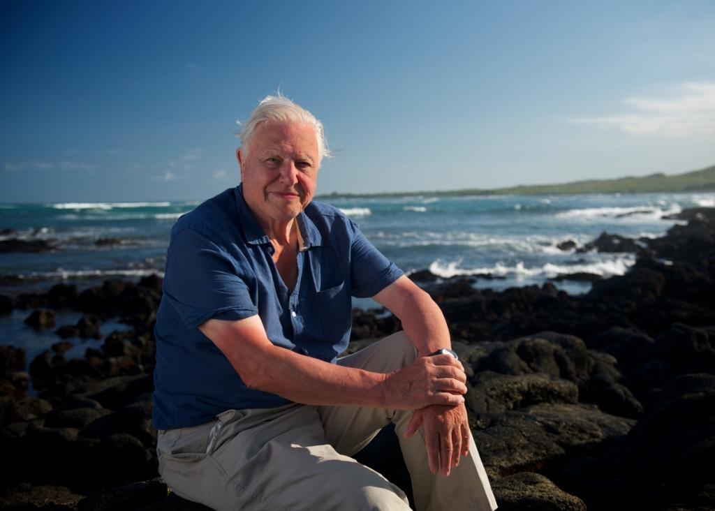 Знаменитому натуралисту Дэвиду Аттэнборо — 90 лет!
