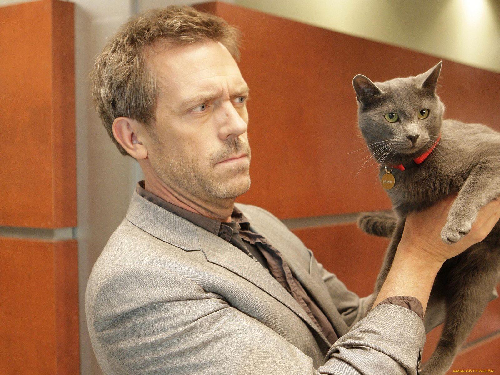 Как узнать, что на самом деле думает ваш кот?
